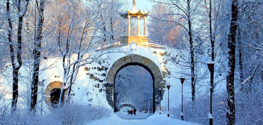 Tsarskoe selo zima 1