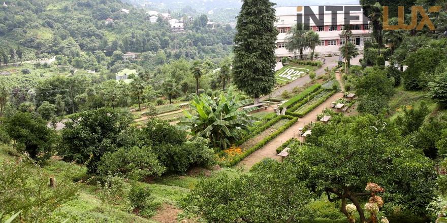 garden batumi