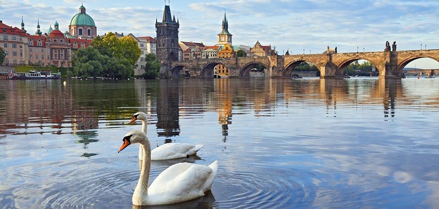 Варшава - Прага - Карловы Вары - Дрезден - Вроцлав
